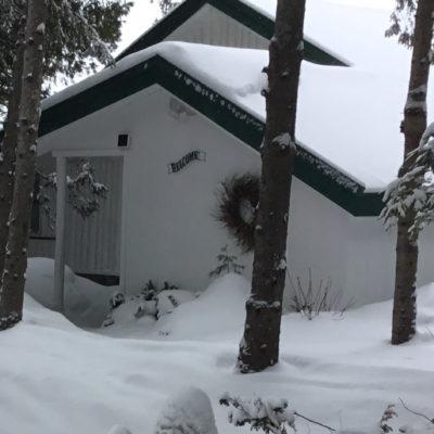 Cozy Cottage - Winter 2019
